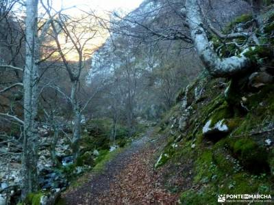Parque Natural y Reserva de la Biosfera de Redes;viajes puente octubre rutas madeira senderismo cost
